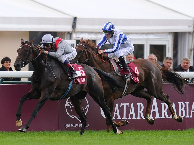Treve: Can win the Arc on Sunday