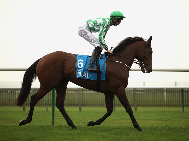 War Command: Looks solid each-way bet in the QIPCO 2000 Guineas