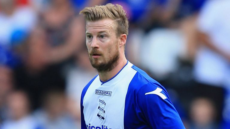 Wade Elliott: On loan at Ashton Gate