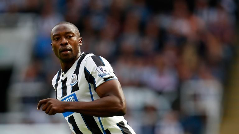 Ameobi: the Nigerian has beefed up Newcastle's frontline, says David