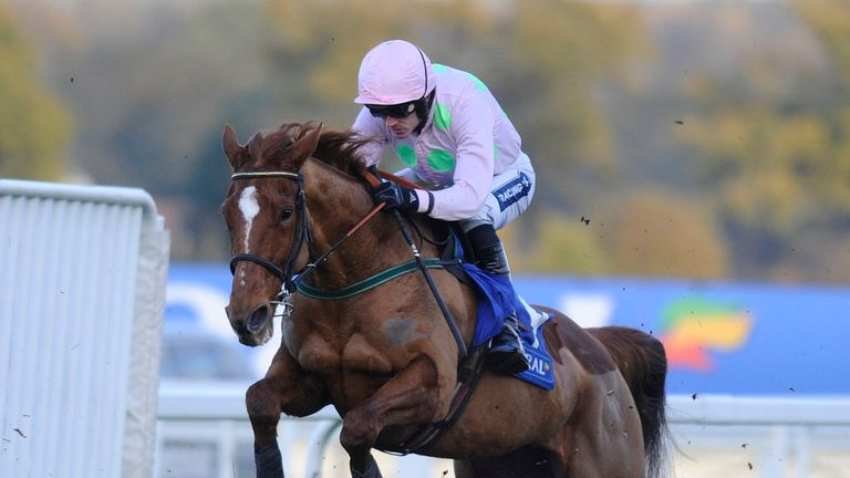 Annie Power: Can she become a live Champion Hurdle candidate?