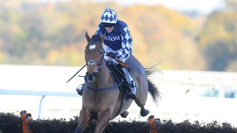 Irving: Will skip the Tolworth Hurdle
