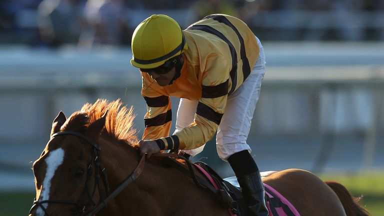 Wise Dan: Required emergency surgery for onset of colic