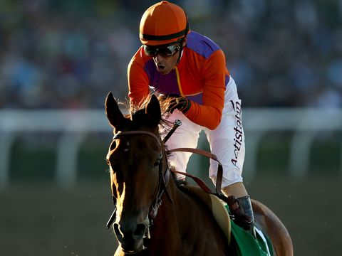 Gary Stevens celebrates a stunning Breeders' Cup victory on Beholder