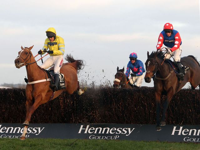 Triolo d'Alene (left): Landed the Hennessy