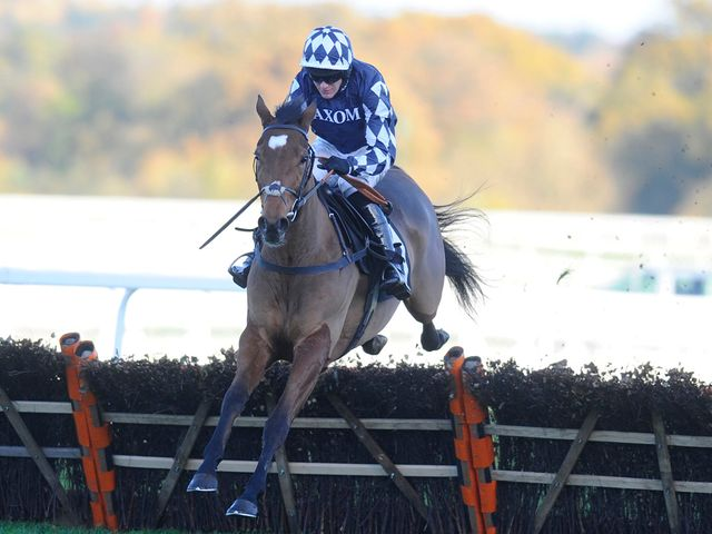 Irving: Declared for Saturday's Sky Bet Dovecote Novices' Hurdle