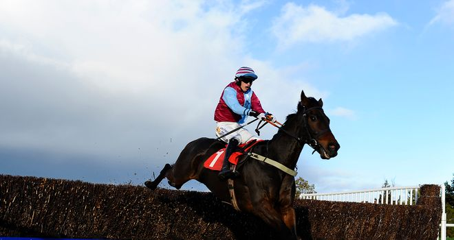 Cloudy Too: Set to take his chance in the Cheltenham Gold Cup
