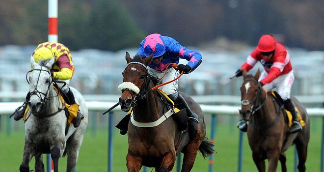 Cue Card et al are set to line up at Kempton