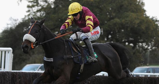 Harry Topper: Can be top dog at Sandown