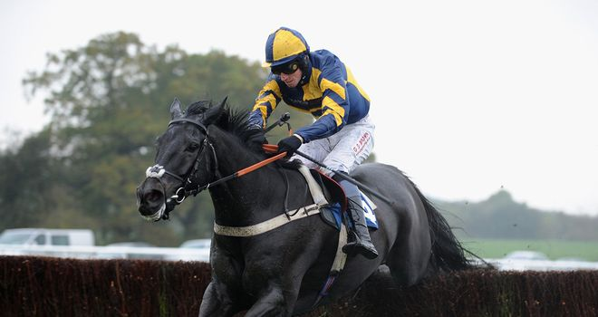 Mendip Express: Newbury an option before Cheltenham