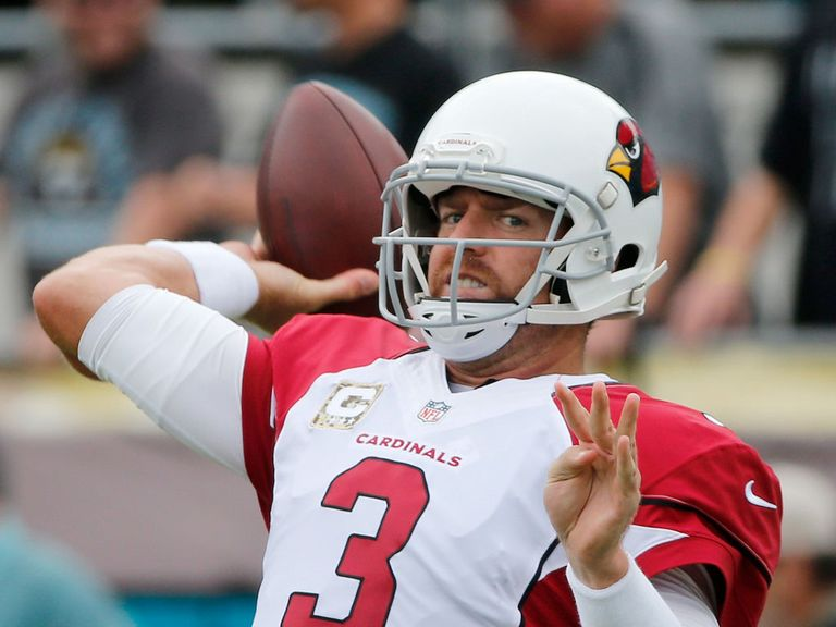 Carson Palmer threw for 419 yards
