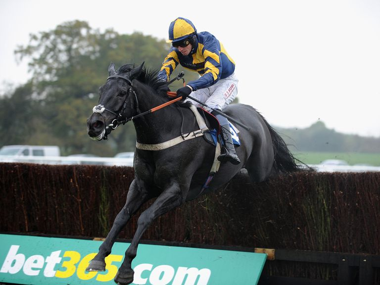 Mendip Express: Tipped to win the Scottish National