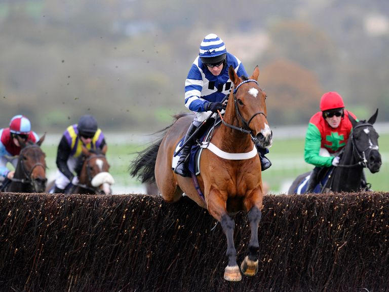 Oscar Whisky: Set to return to Cheltenham