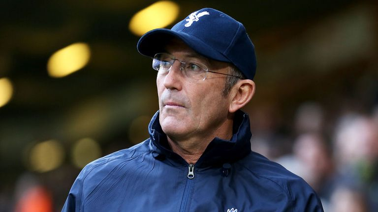 Tony Pulis: Crystal Palace manager wants new signings