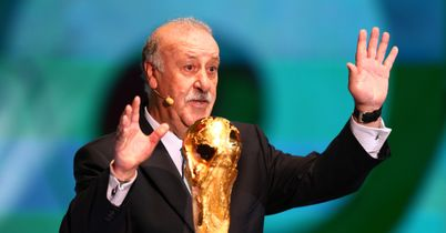Del Bosque wants Spain focus