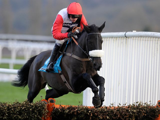 Big Buck's: Faces five in the Cleeve Hurdle