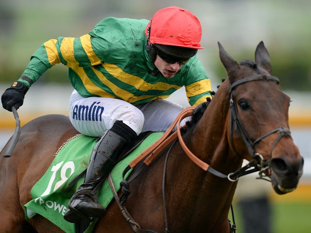 Colour Squadron: The mount of Tony McCoy