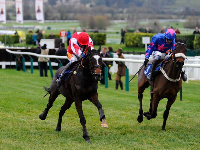 Monbeg Dude: Doncaster is the right option