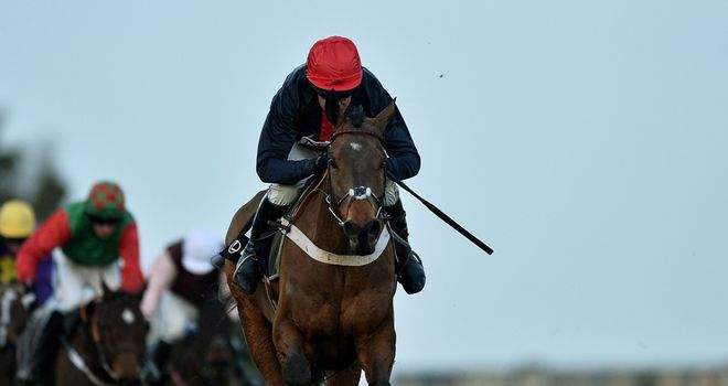 Bobs Worth: Ready to defend his Gold Cup crown