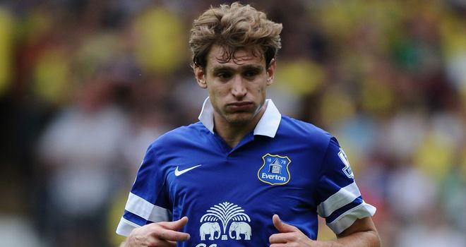 Nikica Jelavic: Moving to join Steve Bruce at Hull