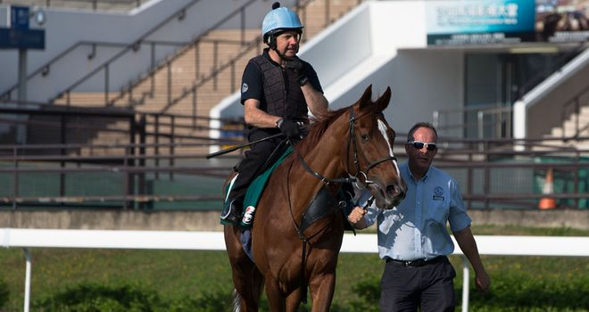 Red Cadeaux: No joy in Japan on Sunday