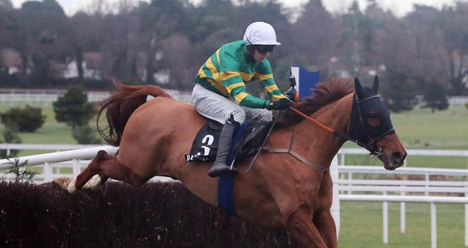 Defy Logic: Will go for the Irish Arkle
