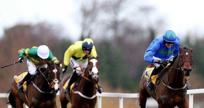 Hurricane Fly: Expected to confirm his superiority over these two rivals