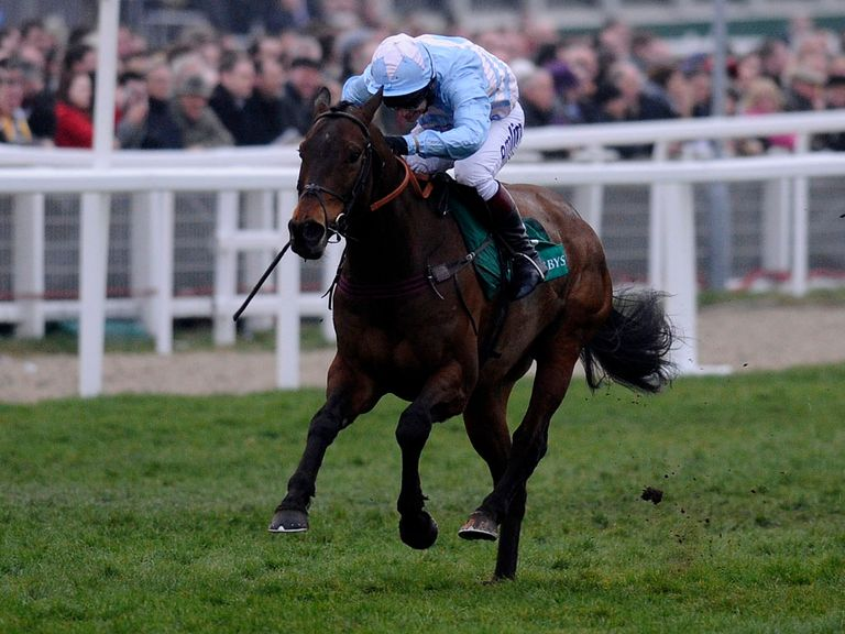 Cheltenian: Set for the Betfair Hurdle