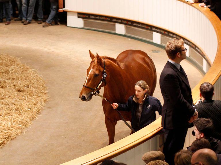 Dancing Rain: Sold for 4,000,000gns