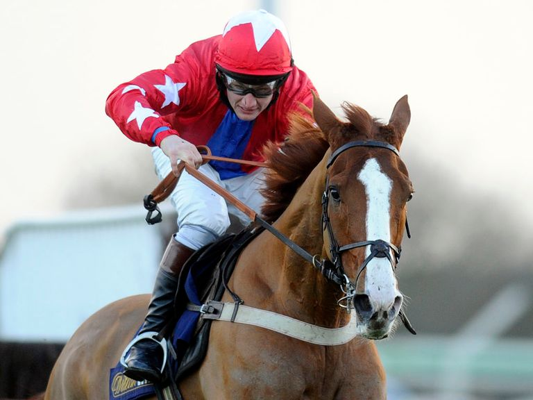 Sire De Grugy: Heads Ascot entries