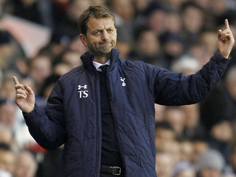 Tim Sherwood: Focused on getting current squad fit