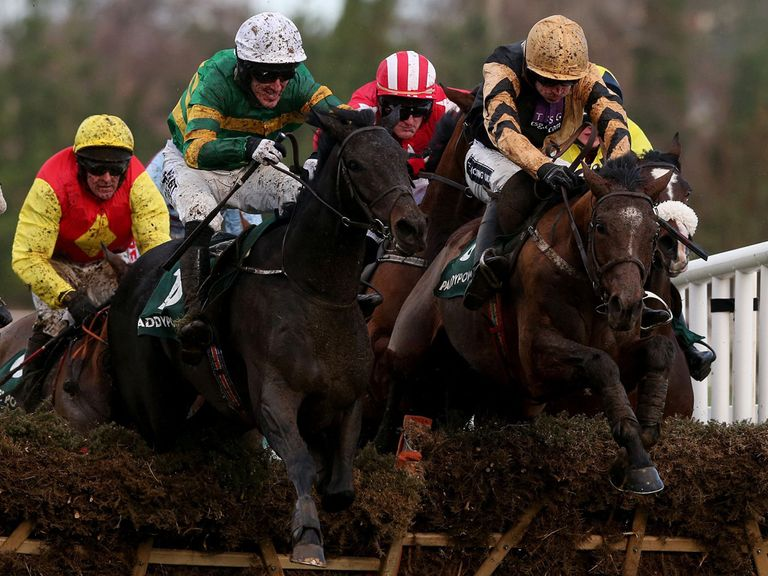 Plinth: Can underline his JCB Triumph Hurdle claims