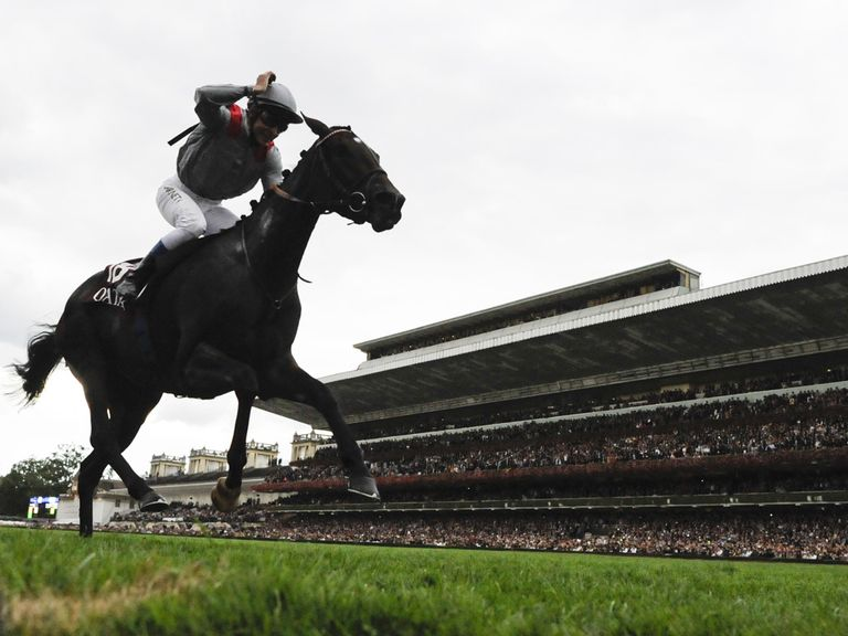 Treve: Six pounds and more in hand of her rivals at Royal Ascot