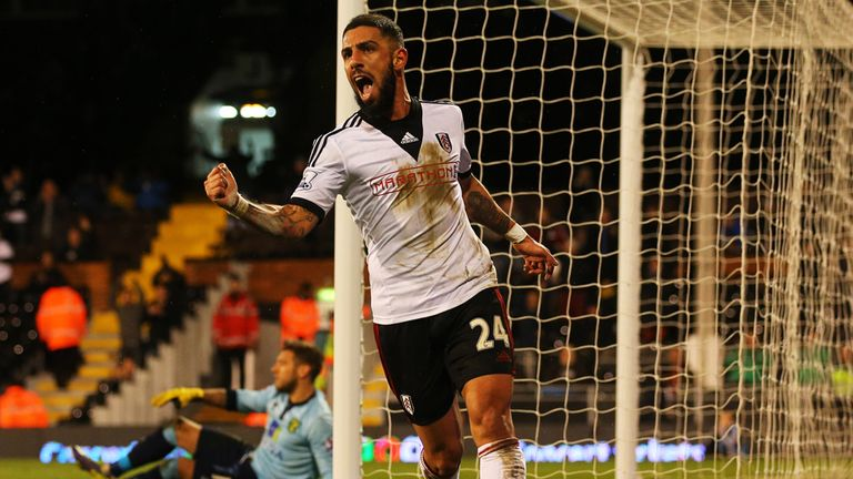 Ashkan Dejagah: The winger believes Fulham are good enough to stay up