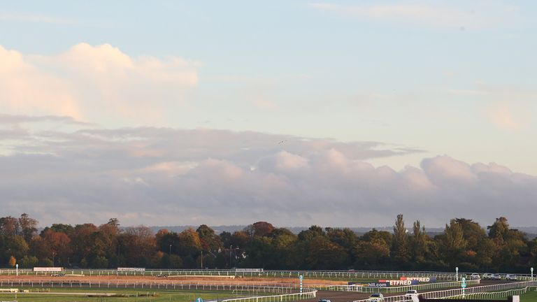 Kempton: Set for 'Jumpers' Bumpers' card on Sunday
