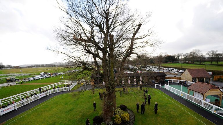 Plumpton: Further rain forced the decision
