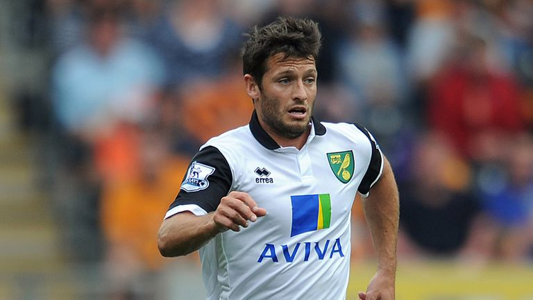 Wes Hoolahan: Could still depart Norwich