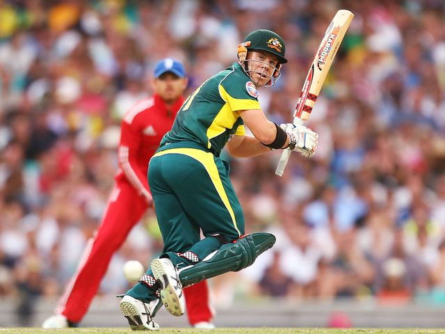 David Warner hit a half-century for Australia