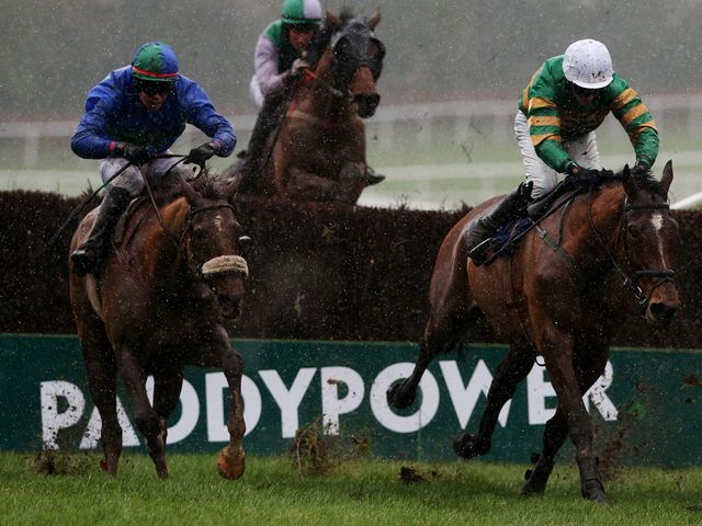 He'llberemembered (left): Won valuable prize at Leopardstown