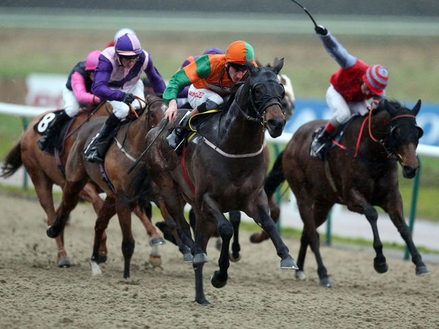 Perfect Pasture: Made it six in a row at Lingfield