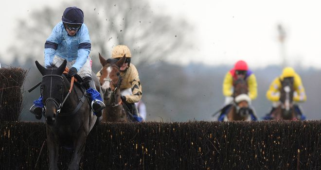 Bury Parade: Knows what's required to win at Kempton