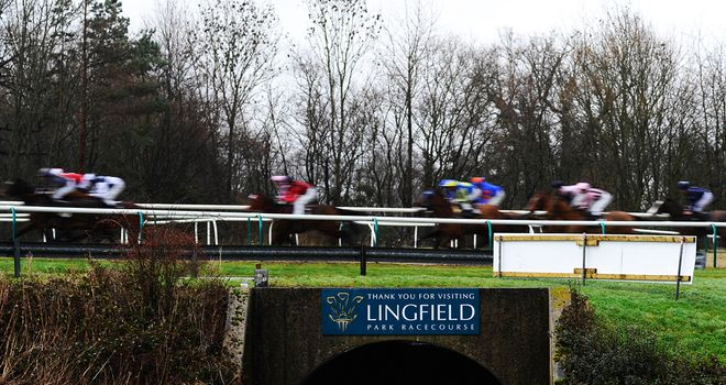 Lingfield: Race on Wednesday