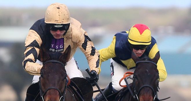 Briar Hill: Expected to lead the Willie Mullins charge on the Albert Bartlett