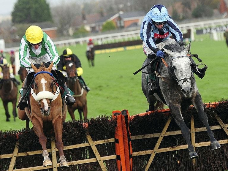 Native Gallery (right): Worth a bet in the Sky Bet Chase