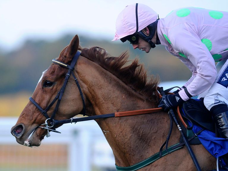Annie Power: Where will she head to at Cheltenham?
