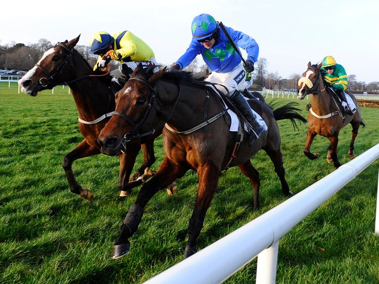 Hurricane Fly: Favourite for a third Champion Hurdle