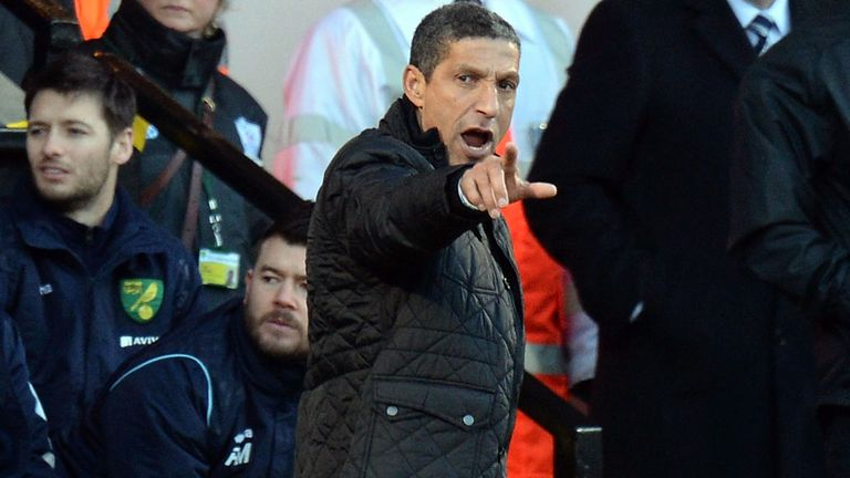 Chris Hughton: Backed by the club's hierarchy to keep Norwich up
