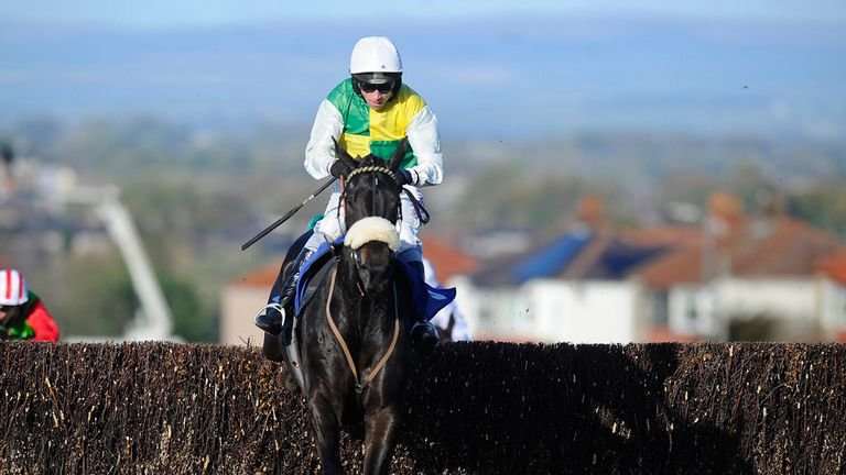 Many Clouds: Delighted his trainer despite defeat
