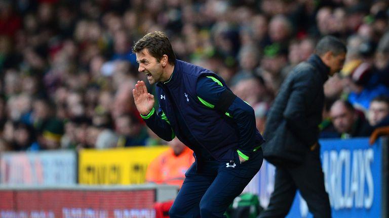 Tim Sherwood: Saw Tottenham suffer a setback at Carrow Road