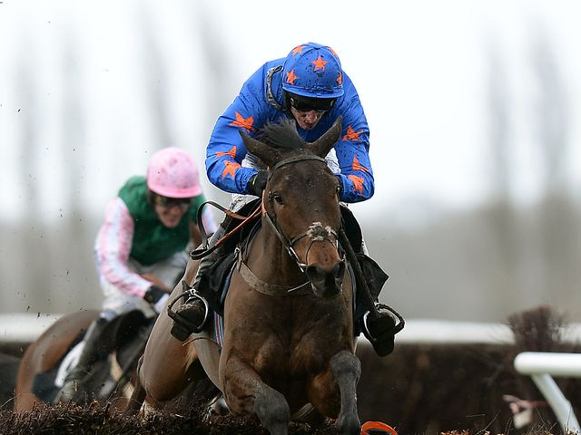 Calipto: Unlucky third at Cheltenham